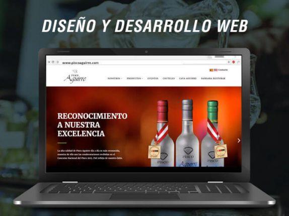 pisco-aguirre-diseno-paginas-web-para-piscos-licores-lima-peru-1